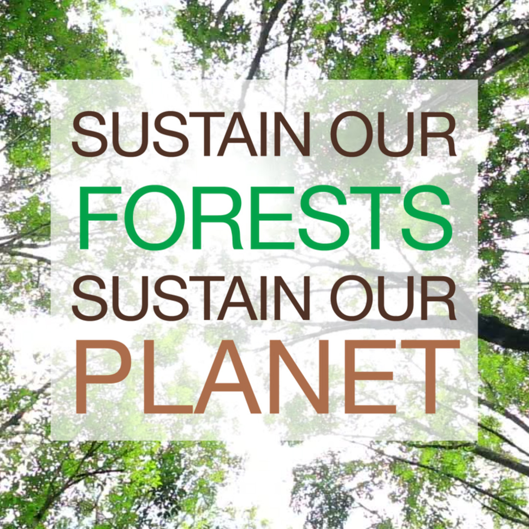LET'S CELEBRATE THE INTERNATIONAL DAY OF FORESTS